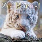 ZooBorn